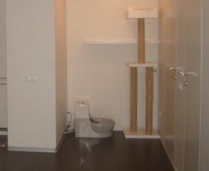 tualet_dlya_koshek